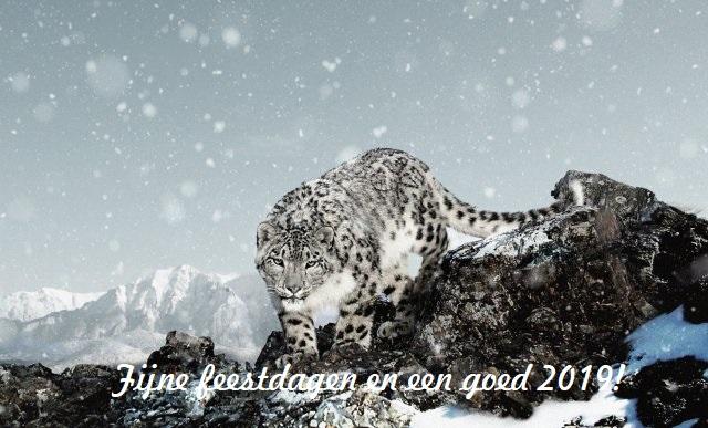 10523_fullimage_wnf-e-card-kerstmis-sneeuwluipaard_640x387.jpg