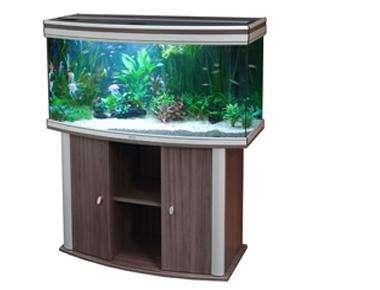486196_0_82_aquariumaquatlantisambiancehorizon100_1.jpg