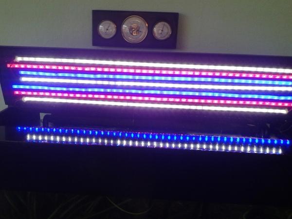 elegant emejing zelf led verlichting maken aquarium trend with lichtbak maken met led verlichting