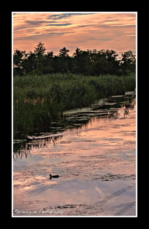 landscape_by_daantigresss-dacl75t.png