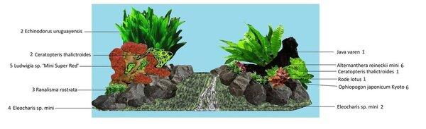 Planten ontwerp.jpg