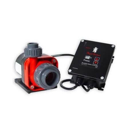 Red-Dragon-3-Mini-Speedy-pomp-5000L.jpg