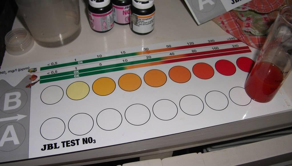 tester nitraat.jpg