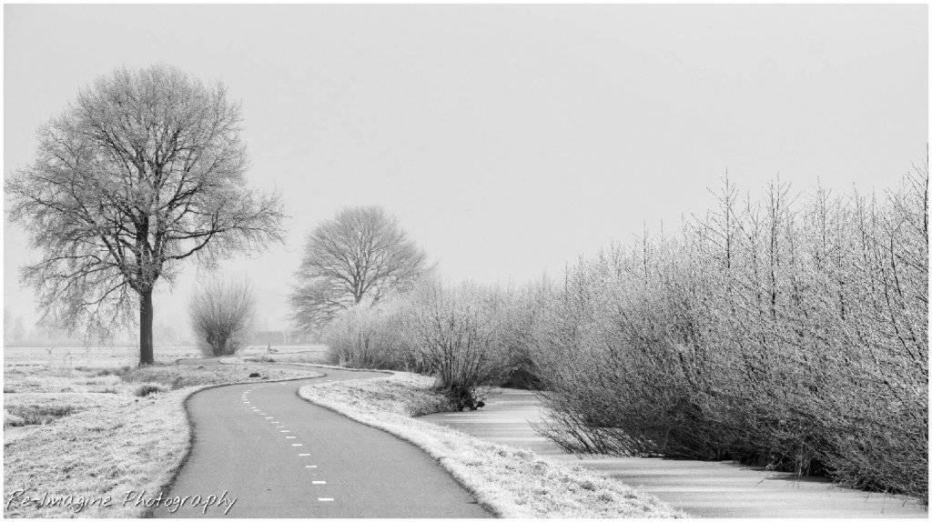winter_by_daantigresss-davvk59.jpg