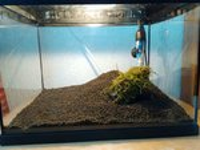 495134_0_82_lavasteen_in_aquarium.jpg