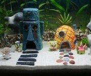spongebob-aquarium-set.jpg